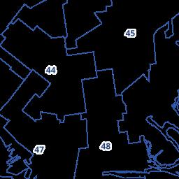 District 45 - Farah Louis