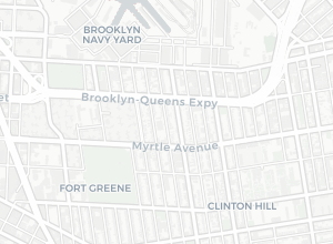 Doitt Nyc Map.Carto Maps By Nyc Doitt Public Data
